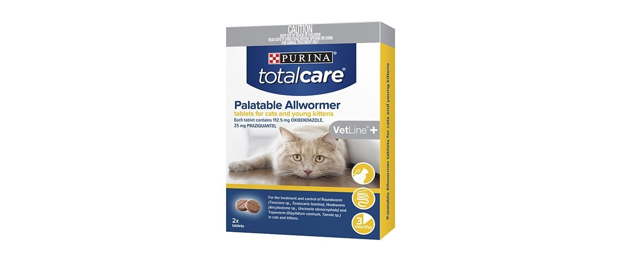Worms In Cats And How To Treat Them Purina